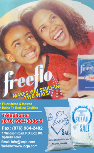 freeflo Iodized salt